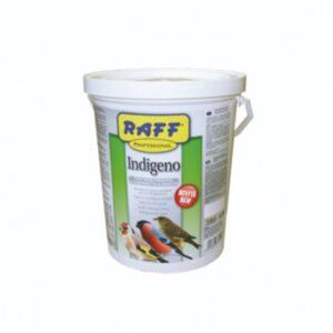 Pasta de cria blanca RAFF